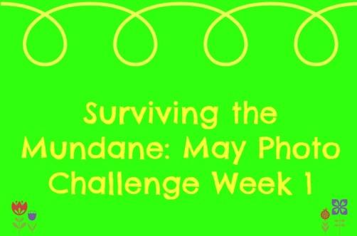 May Photo Challenge Week One